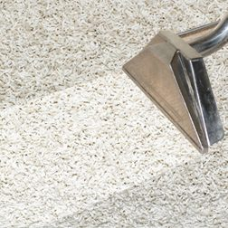Oxygen2Cleancarpet_cleaning
